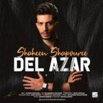 موزیک دل آزار از شاهین شاپوری