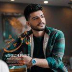 موزیک عاشق پیشه از حامد عزیزی