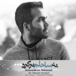 موزیک به ساحلم برگرد از محمدرضا محمدی